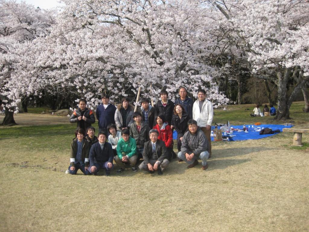 花見 2012